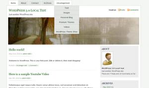 mistylook-wordpress-theme-with-custom-menu.jpg-300x178