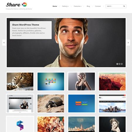 best-wordpress-blog-themes-2015-share