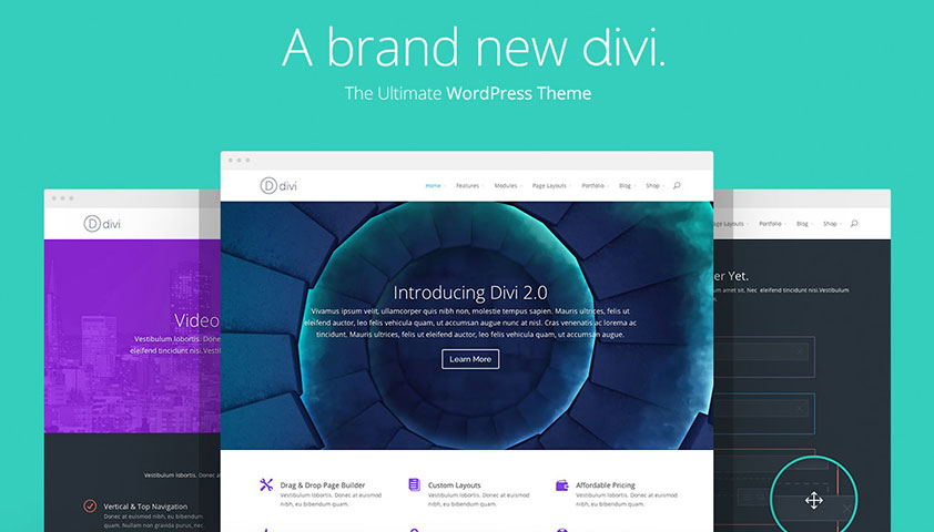 divi_loainding-fast-wordpress-theme